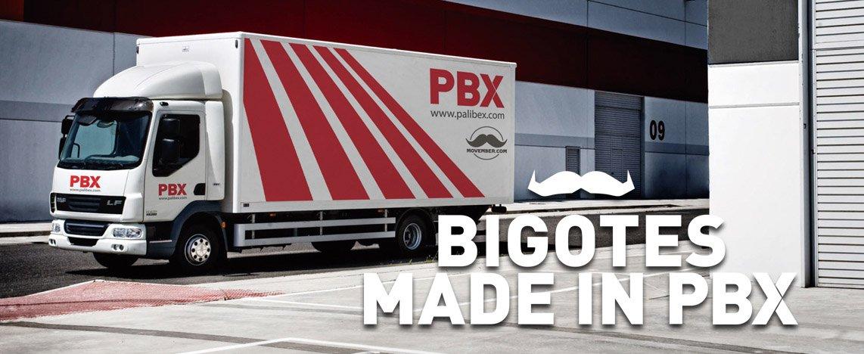 PBX-palibex-movember-2014